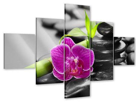 Acrylglasbild 5-teilig Feng-Shui-Orchidee