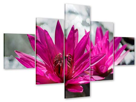 Acrylglasbild 5-teilig Seerosenduo in Pink