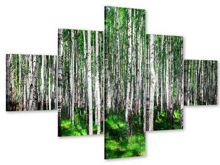 Acrylglasbild 5-teilig Sommerlicher Birkenwald