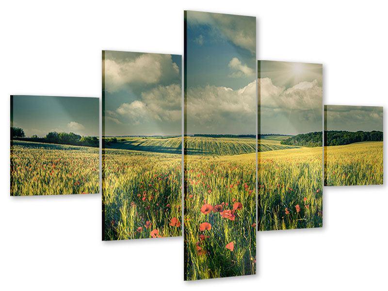 Acrylglasbild 5-teilig Der Mohn im Weizenfeld