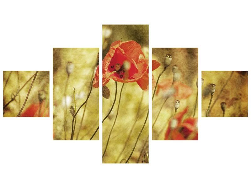 Acrylglasbild 5-teilig Der wilde Mohn