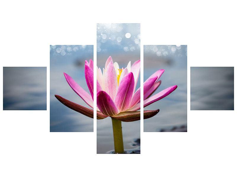 Acrylglasbild 5-teilig Lotus im Morgentau