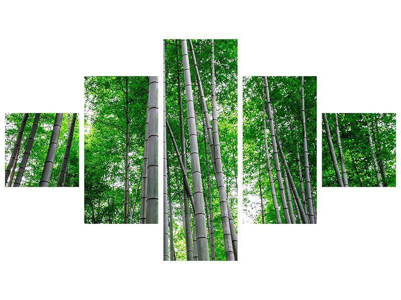 Acrylglasbild 5-teilig Bambuswald