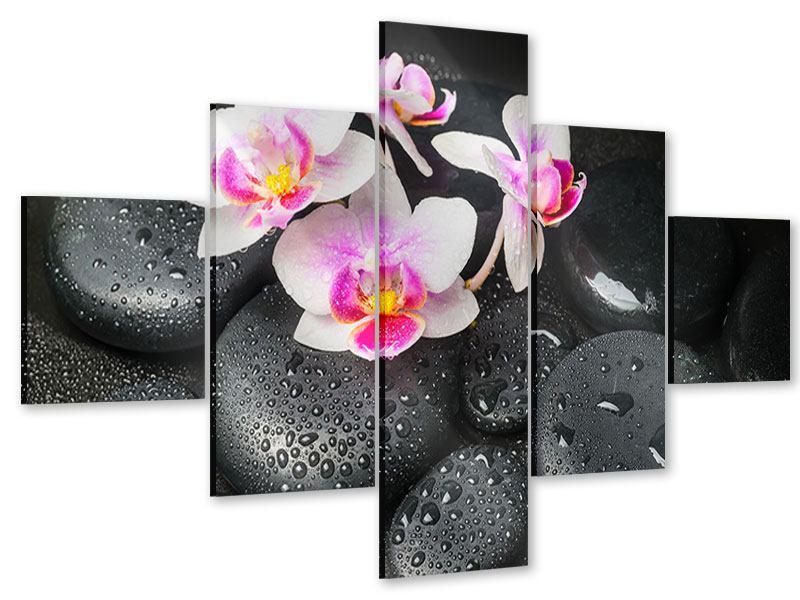 Acrylglasbild 5-teilig Feng-Shui-Orchidee Zen