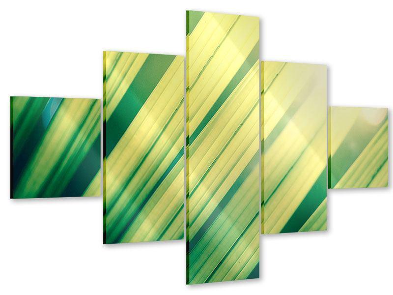 Acrylglasbild 5-teilig Beleuchtetes Palmblatt