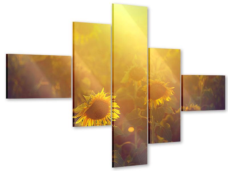Acrylglasbild 5-teilig modern Sonnenblumen im goldenen Licht