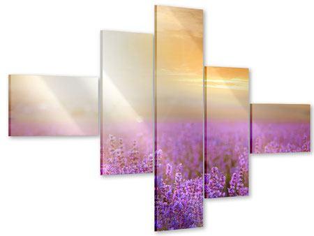 Acrylglasbild 5-teilig modern Sonnenuntergang beim Lavendelfeld
