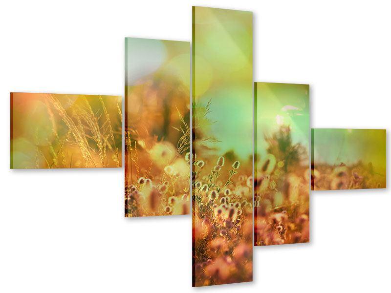 Acrylglasbild 5-teilig modern Blumenwiese in der Abenddämmerung
