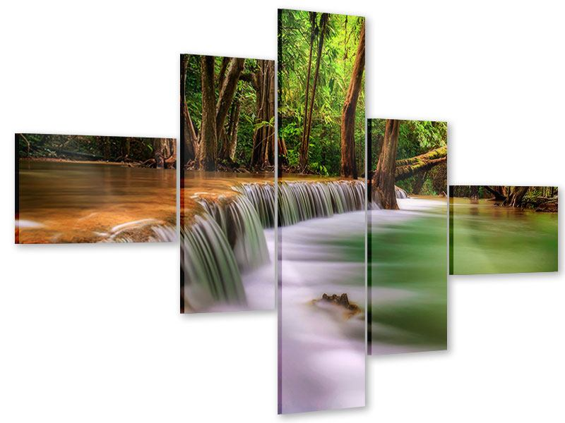Acrylglasbild 5-teilig modern Deep Forest