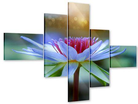 Acrylglasbild 5-teilig modern Pretty Lotus