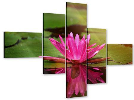Acrylglasbild 5-teilig modern Lotus im Wasser