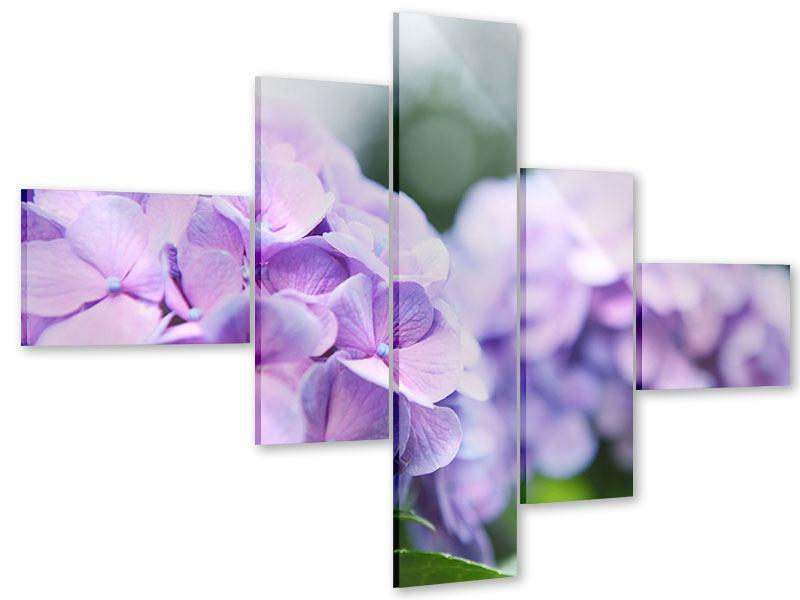 Acrylglasbild 5-teilig modern Hortensien