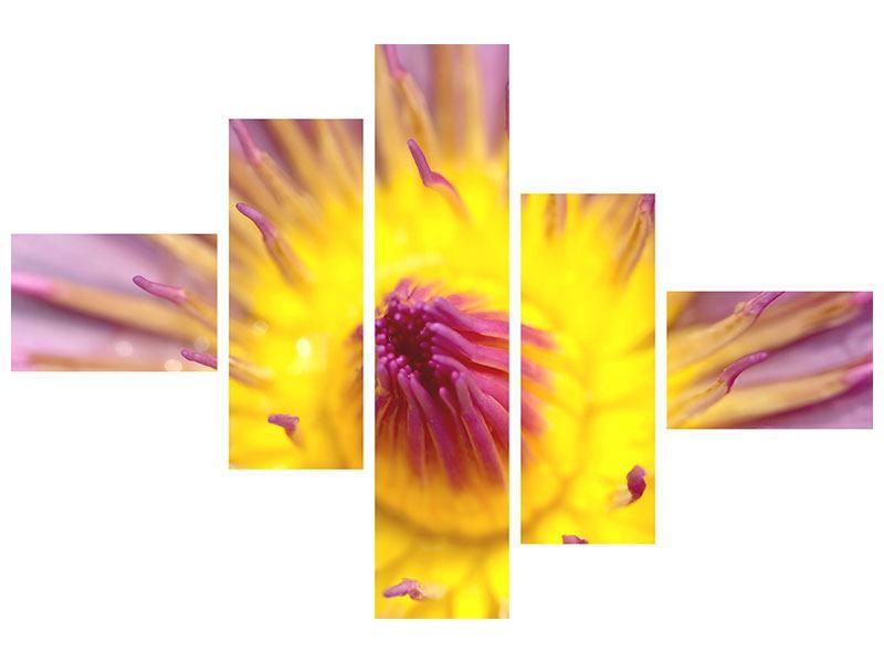 Acrylglasbild 5-teilig modern XXL-Lotus