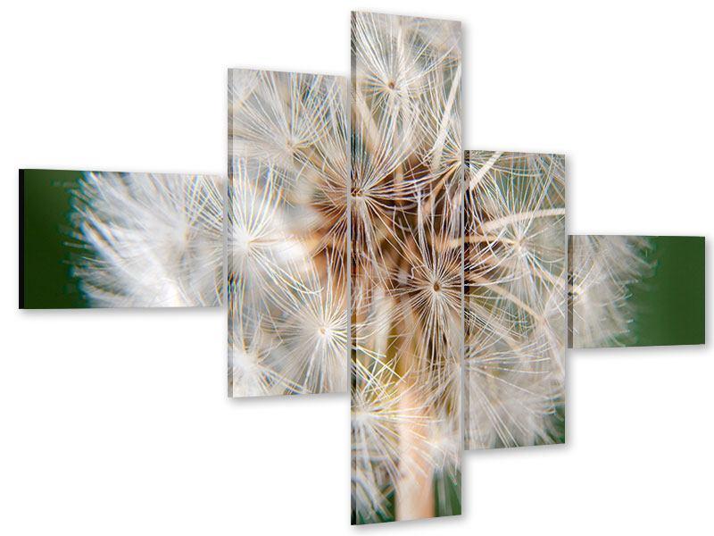 Acrylglasbild 5-teilig modern Riesenlöwenzahn