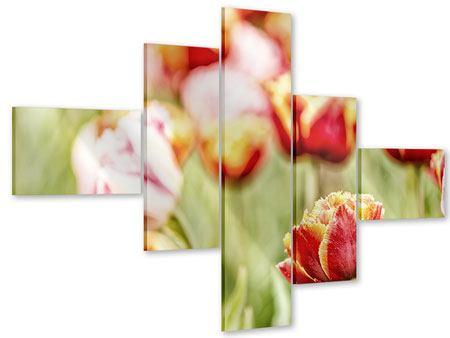 Acrylglasbild 5-teilig modern Die Schönheit der Tulpe