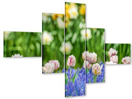 Acrylglasbild 5-teilig modern Ein Garten mit Tulpen