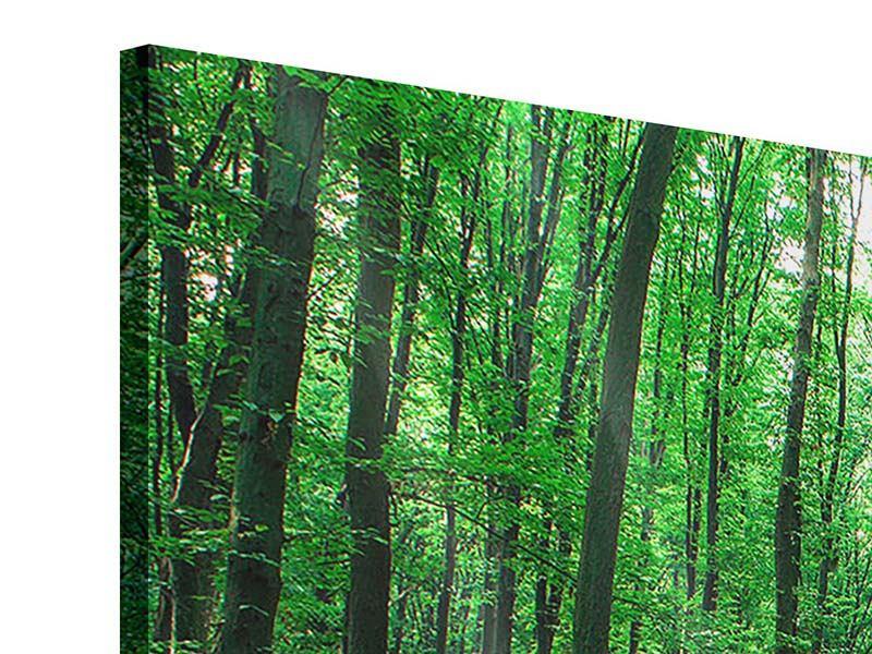 Acrylglasbild 5-teilig modern Tannenwald