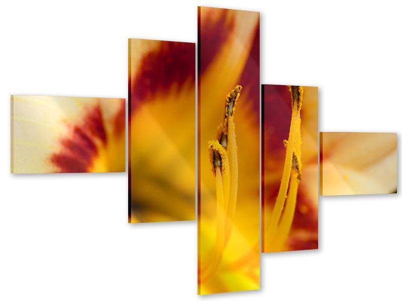 Acrylglasbild 5-teilig modern Riesenlilie
