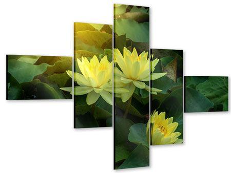Acrylglasbild 5-teilig modern Wilde Lotus