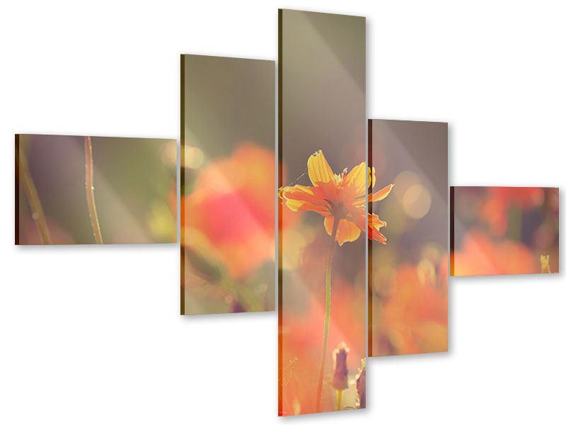 Acrylglasbild 5-teilig modern Blütenpracht