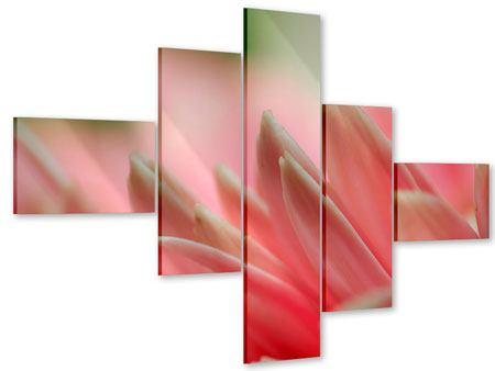 Acrylglasbild 5-teilig modern Close Up einer Blüte