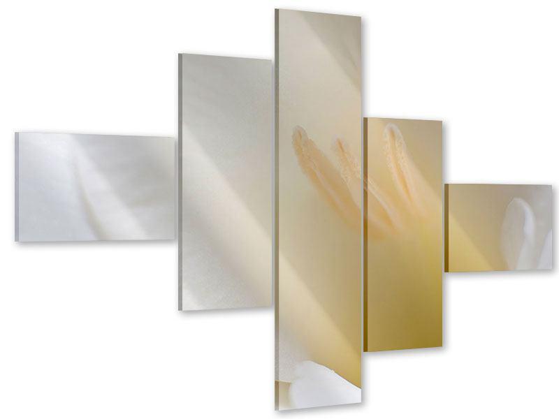 Acrylglasbild 5-teilig modern In einer Blüte