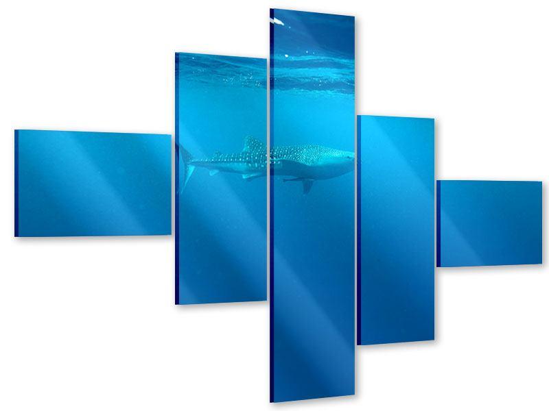 Acrylglasbild 5-teilig modern Der Walhai