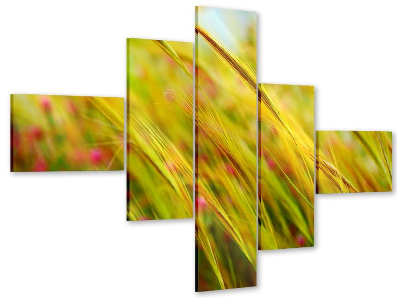 Acrylglasbild 5-teilig modern Das Weizenfeld