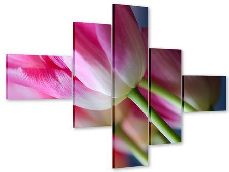 Acrylglasbild 5-teilig modern Makro Tulpen
