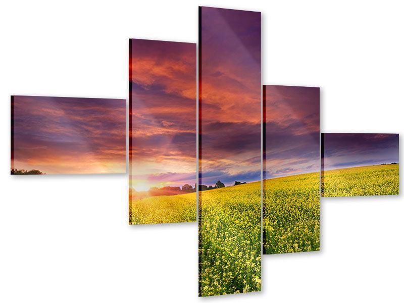 Acrylglasbild 5-teilig modern Abenddämmerung