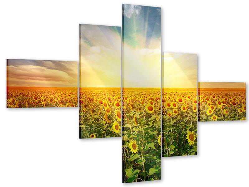 Acrylglasbild 5-teilig modern Ein Feld voller Sonnenblumen