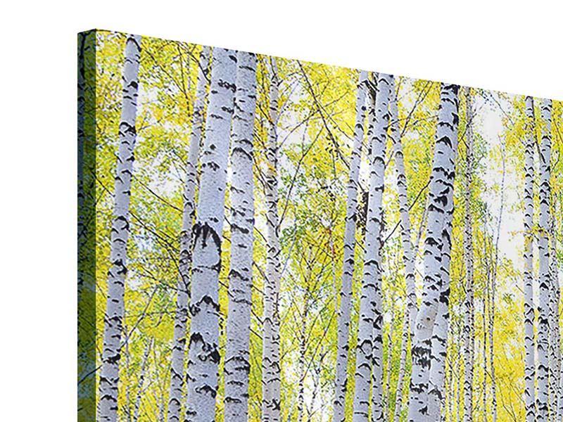 Acrylglasbild 5-teilig modern Herbstlicher Birkenwald