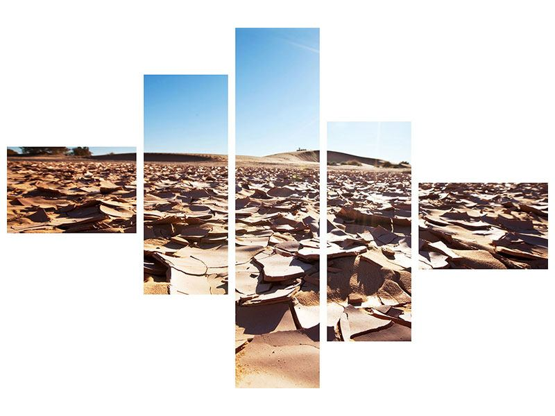 Acrylglasbild 5-teilig modern Dürre