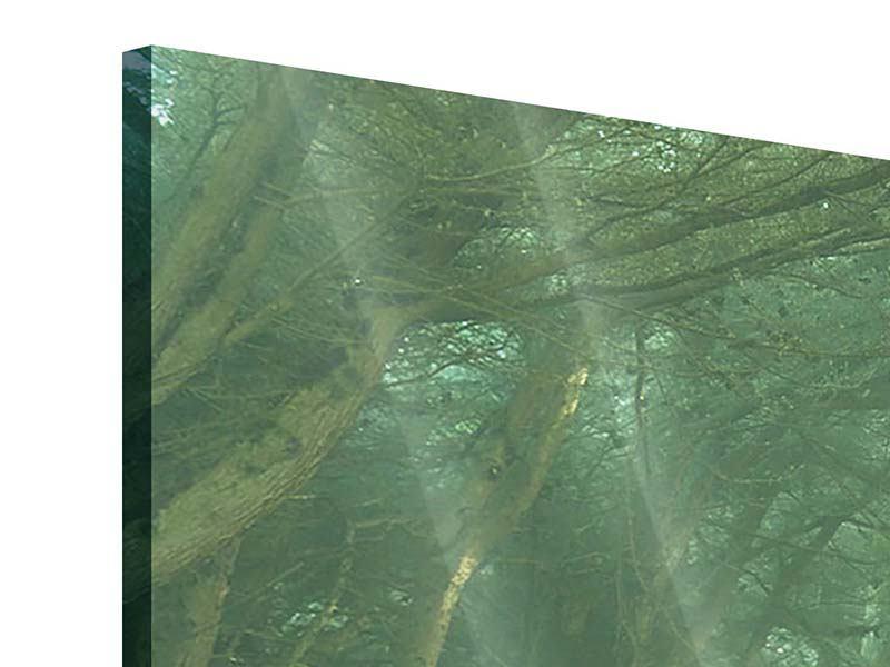 Acrylglasbild 5-teilig modern Die Allee