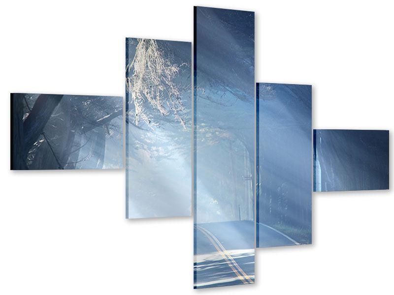 Acrylglasbild 5-teilig modern Lichtdurchflutete Baumallee