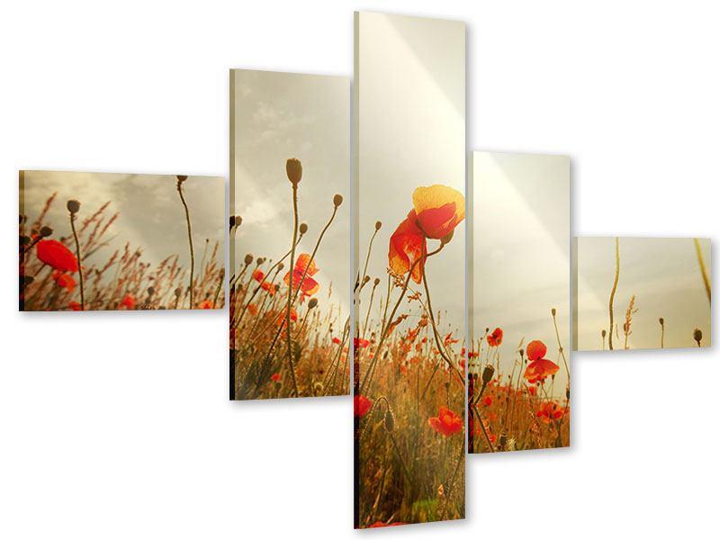 Acrylglasbild 5-teilig modern Das Mohnfeld bei Sonnenaufgang