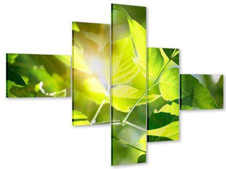 Acrylglasbild 5-teilig modern Es grünt so grün