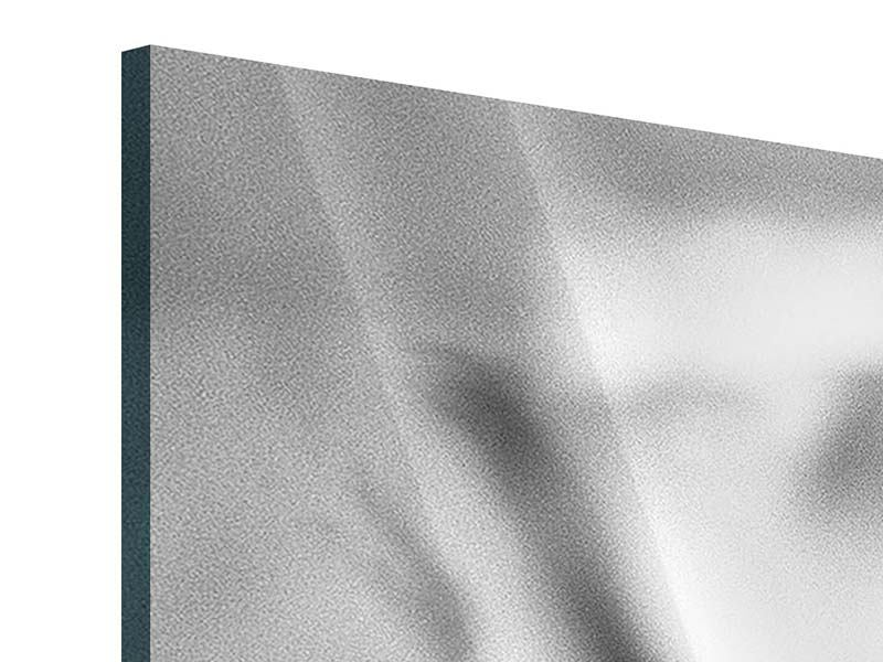Acrylglasbild 5-teilig modern Makro Lilienblatt