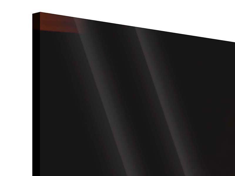 Acrylglasbild 5-teilig modern Der Kamin