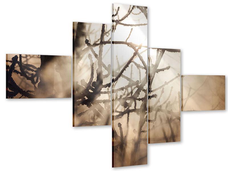 Acrylglasbild 5-teilig modern Äste im Schleierlicht