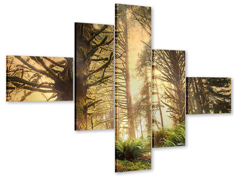 Acrylglasbild 5-teilig modern Sonnenuntergang im Dschungel