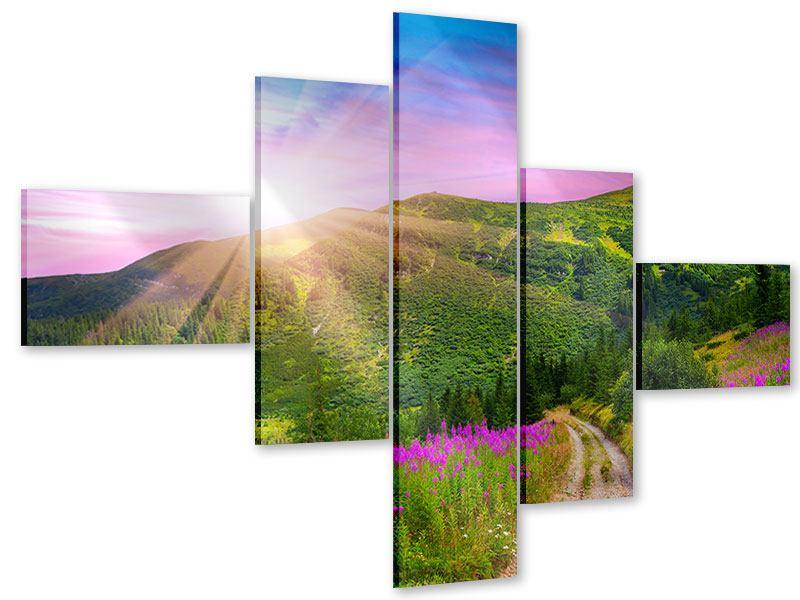 Acrylglasbild 5-teilig modern Eine Sommerlandschaft bei Sonnenaufgang