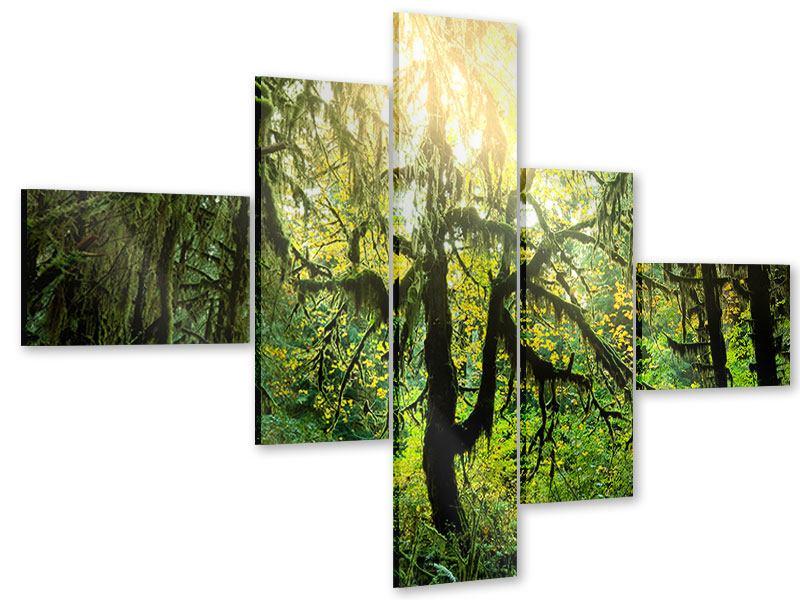 Acrylglasbild 5-teilig modern Verträumter Wald