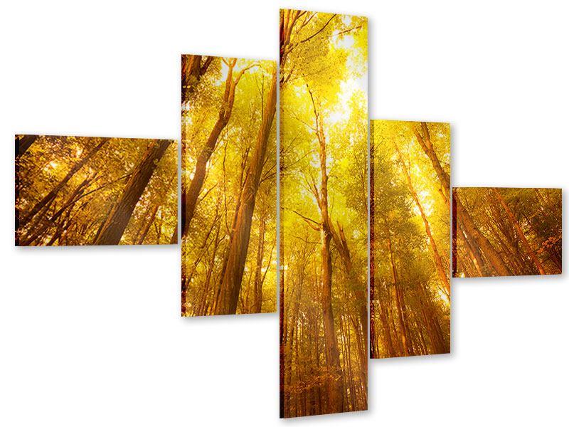 Acrylglasbild 5-teilig modern Herbstwald
