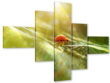 Acrylglasbild 5-teilig modern Marienkäfer im Sonnenlicht