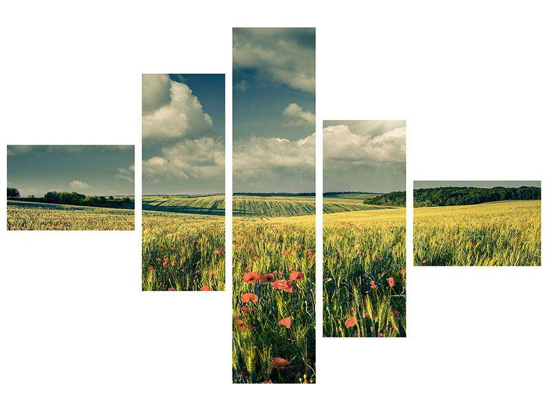 Acrylglasbild 5-teilig modern Der Mohn im Weizenfeld