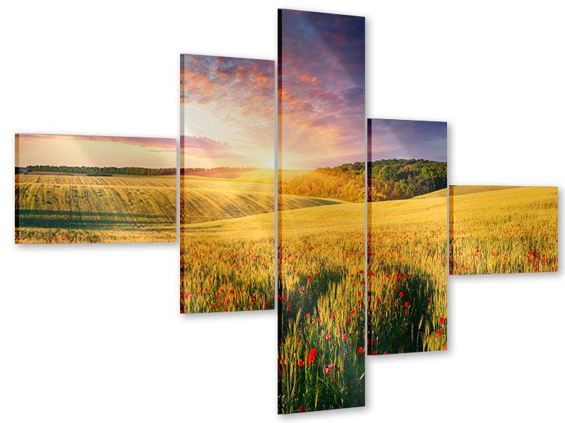 Acrylglasbild 5-teilig modern Ein Blumenfeld bei Sonnenaufgang