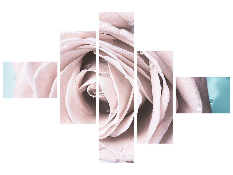 Acrylglasbild 5-teilig modern Pastellrose