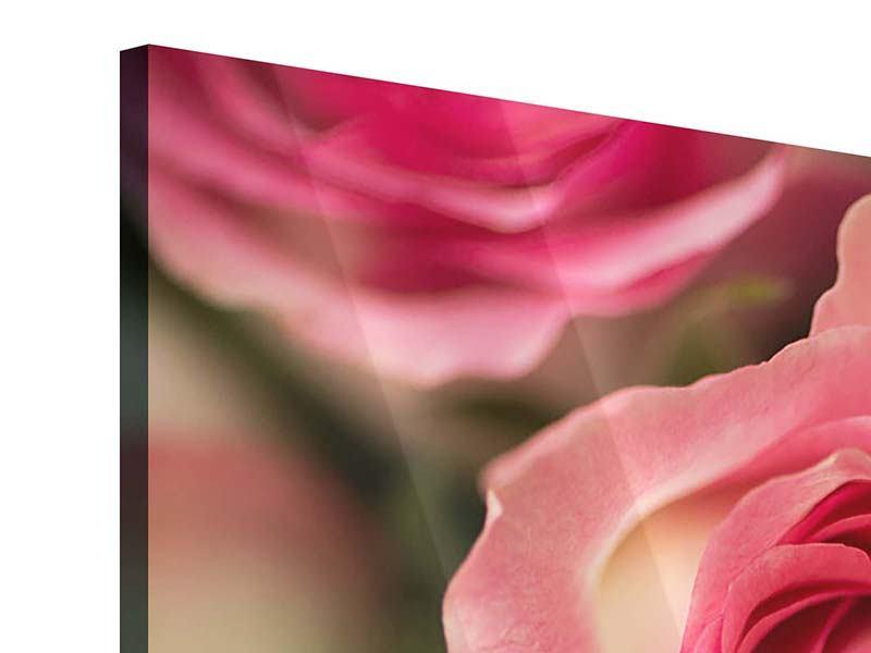 Acrylglasbild 5-teilig modern Rosenliebe