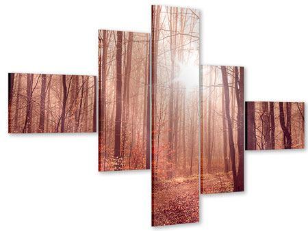 Acrylglasbild 5-teilig modern Sonnenuntergang im Herbstwald